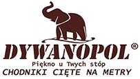 Chodnikinametry.pl